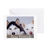 Husky Greeting Cards (10 Pack)