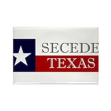 Secede Texas Rectangle Magnet