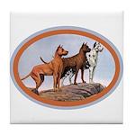 Three Great Danes Tile Coaster