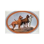 Three Great Danes Rectangle Magnet (10 pack)