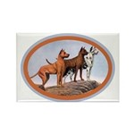 Three Great Danes Rectangle Magnet
