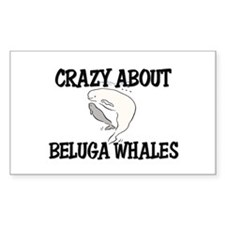 Crazy About Beluga Whales Rectangle Decal