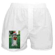 Christmas Squirrel Boxer Shorts