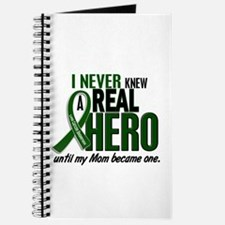 REAL HERO 2 Mom LiC Journal