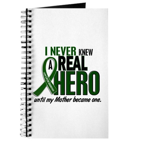 REAL HERO 2 Mother LiC Journal