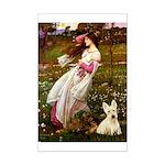Windflowers / Scottie (w) Mini Poster Print