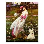 Windflowers / Scottie (w) Small Poster
