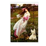 Windflowers / Scottie (w) Postcards (Package of 8)