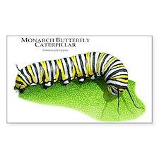 Monarch Butterfly Caterpillar Rectangle Stickers