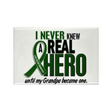 REAL HERO 2 Grandpa LiC Rectangle Magnet