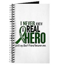 REAL HERO 2 Best Friend LiC Journal