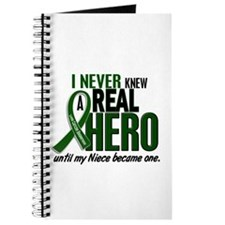REAL HERO 2 Niece LiC Journal