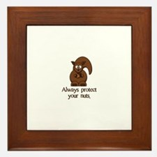 Always Protect Your Nuts Framed Tile