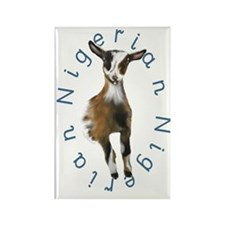 Nigerian Dwarf Goat Rectangle Magnet