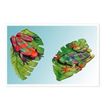 Leaf Frogs Postcards (Package of 8)