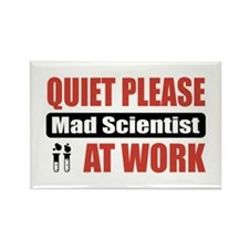 Mad Scientist Work Rectangle Magnet