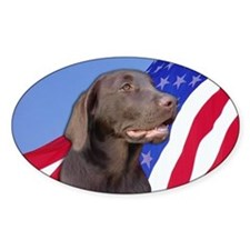 American Chocolate Lab Oval Decal