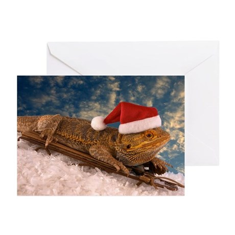 Bearded Dragon Greeting Cards Cafepress
