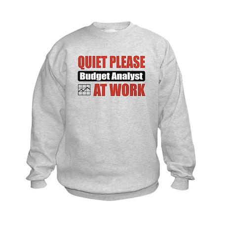 Budget Analyst Work Kids Sweatshirt