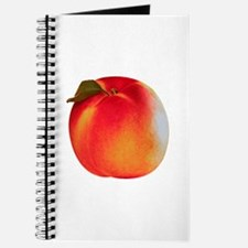 Atlanta Peach Journal