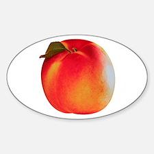 Atlanta Peach Oval Decal