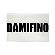 DAMIFINO Rectangle Magnet