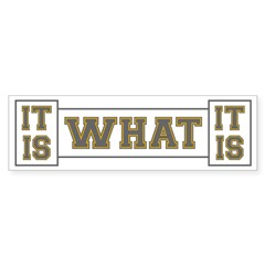 It Is What It Is Gray and G Bumper Sticker