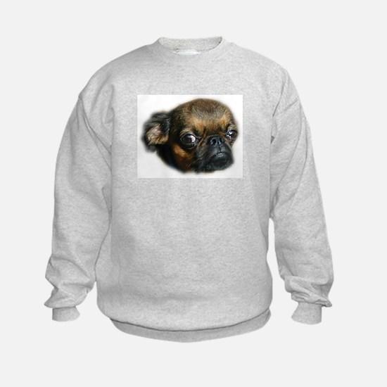 Smooth Brussels Griffon Sweatshirt