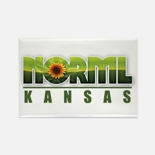 Unique Norml Rectangle Magnet