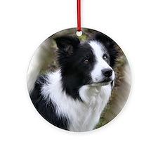 Border Collie Art Ornament (Round)