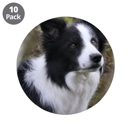 "Border Collie Art 3.5"" Button (10 pack)"