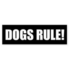 Dogs Rule! Bumper Bumper Sticker