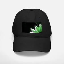 Green Corner Sunflower Baseball Hat
