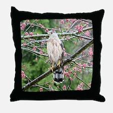 Cooper's Hawk Throw Pillow