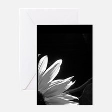 Black & White C Sunflower Greeting Card