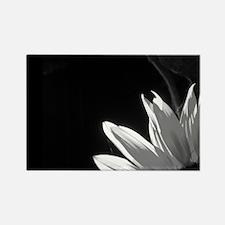 Black & White C Sunflower Rectangle Magnet