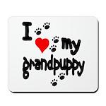 I love my grandpuppy Mousepad
