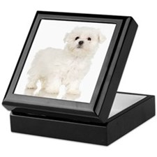 Maltese Puppy Keepsake Box