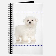 Maltese Puppy Journal