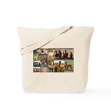Alpaca Pride Designs Tote Bag