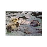 Otter Magnets