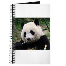 Cute Yummy Journal