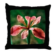 Louisiana Iris - Throw Pillow