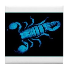 Emperor Scorpion Tile Coaster