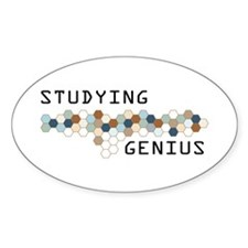 Studying Genius Oval Decal