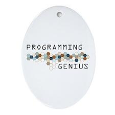 Programming Genius Oval Ornament