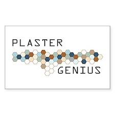 Plaster Genius Rectangle Decal