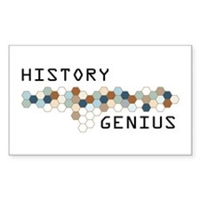 History Genius Rectangle Decal