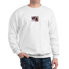 Sweatshirt with Coconut Kitty