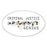 Criminal justice Single